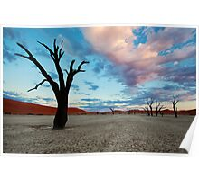 Dead Vlei at Sunrise Poster