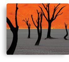 Dead Vlei Tree Skeletons Canvas Print