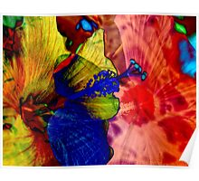 Hibiscus Abstract Poster
