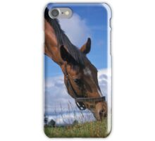 Portrait of a horse. iPhone Case/Skin