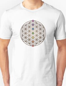 Flower of Life, Chakras Unisex T-Shirt