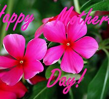 Happy Mothers Day! (Pink beach flowers) by cathywillett