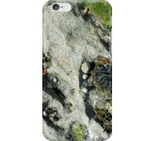 Inishmore seashells iPhone Case/Skin