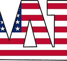 Alpha Delta Pi American Flag by Jason Levin