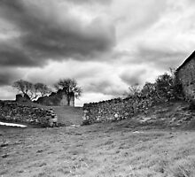 Pendragon Castle BW by Andy Freer