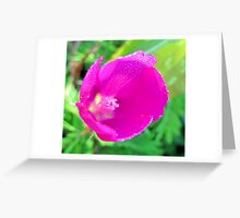 Inside A Wine Cup - Texas wildflower Greeting Card