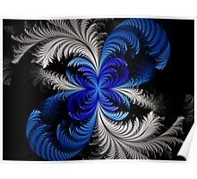 Elliptic Crested Feathers  Poster