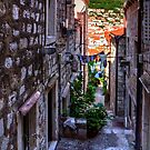 Residential Street in Dubrovnik by Tom Gomez