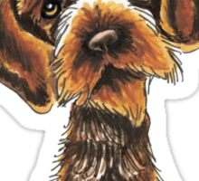 Its All About Me :: Wirehaired Pointing Griffon Sticker