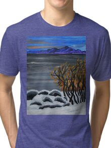 Winter night by the lake Tri-blend T-Shirt
