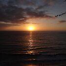 The Sunset - La Puesta Del Sol by Bernhard Matejka