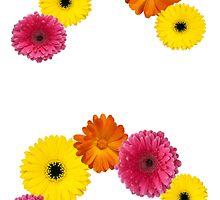 XO flower letters by Caroline Marshal