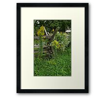 Landis Valley Split Rail Fence I Framed Print