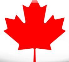 Canada Flag Glass Oval Die Cut Sticker Sticker