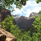 Zion Glory by Christine Ford