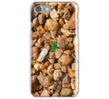 Rocks and Green Glass iPhone Case/Skin