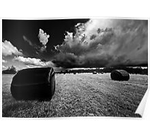 wrapped bales in mono Poster