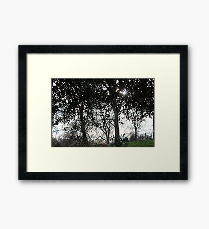 Sun's Hearth Framed Print