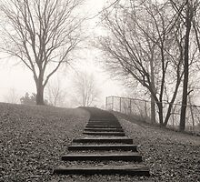 Going up 7 of 9 by Richard Fortier