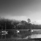 Lucas Creek by meredithnz