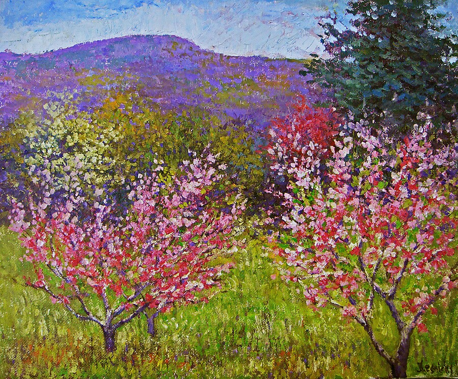 Peach trees in blossom by Julia Lesnichy