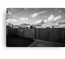 Ibis on a Fence Canvas Print