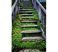 Weathered Stairway Photographic Print