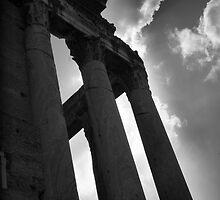 Column Ruins by Sarah N. Hood