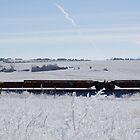 Winter Railroad by Sarah N. Hood