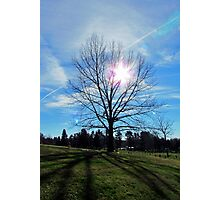 Sun Flare and Shadows Photographic Print