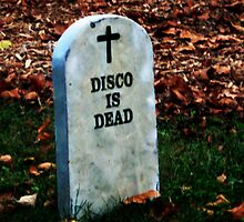 Disco is Dead by Nevermind the Camera Photography
