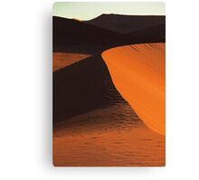 Desert Dune Detail Canvas Print