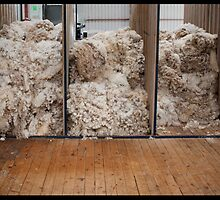 "Wool ""n"" shearing by Anna Ryan"