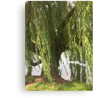 Weeping Into the Water Canvas Print