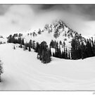 Snowbasin by Robert Mullner