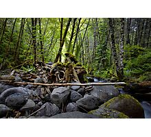 Left Behind ~ Canyon Creek ~ Photographic Print