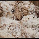 Wool Piled In Bins!  by Anna Ryan