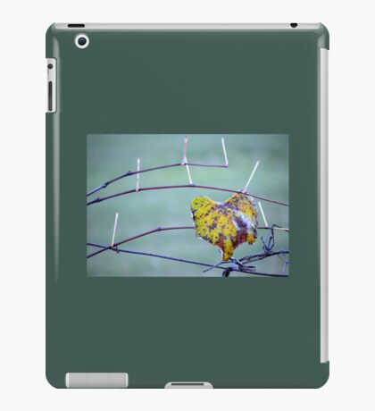 Grape stems & one leaf left iPad Case/Skin