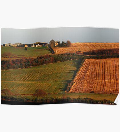 Rural field patterns Poster