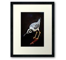 A Ferocious Heron - Gourd Sculpture Framed Print