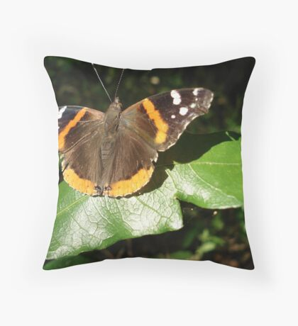 RED ADMIRAL BASKING IN THE EVENING SUN Throw Pillow