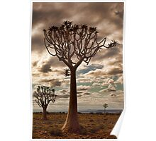 Quiver Trees Poster
