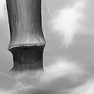 Bamboo by Ibrar Yunus