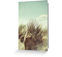 Let's Get Lost Greeting Card
