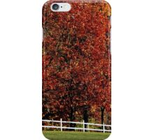 Autumn's explosion of color iPhone Case/Skin