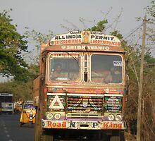 Driving In India! by Edward Denyer