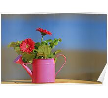 The watering can  Poster