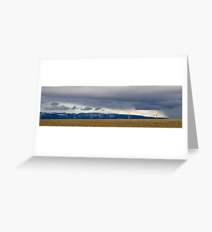 Valley of Giants Greeting Card