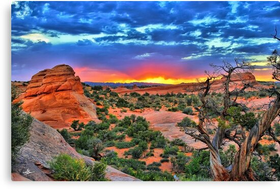 Arches National Park Sunset by Gregory Ballos   gregoryballosphoto.com