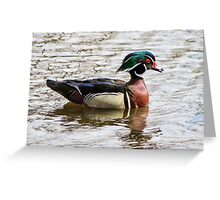 Nature's Brushstroke Greeting Card